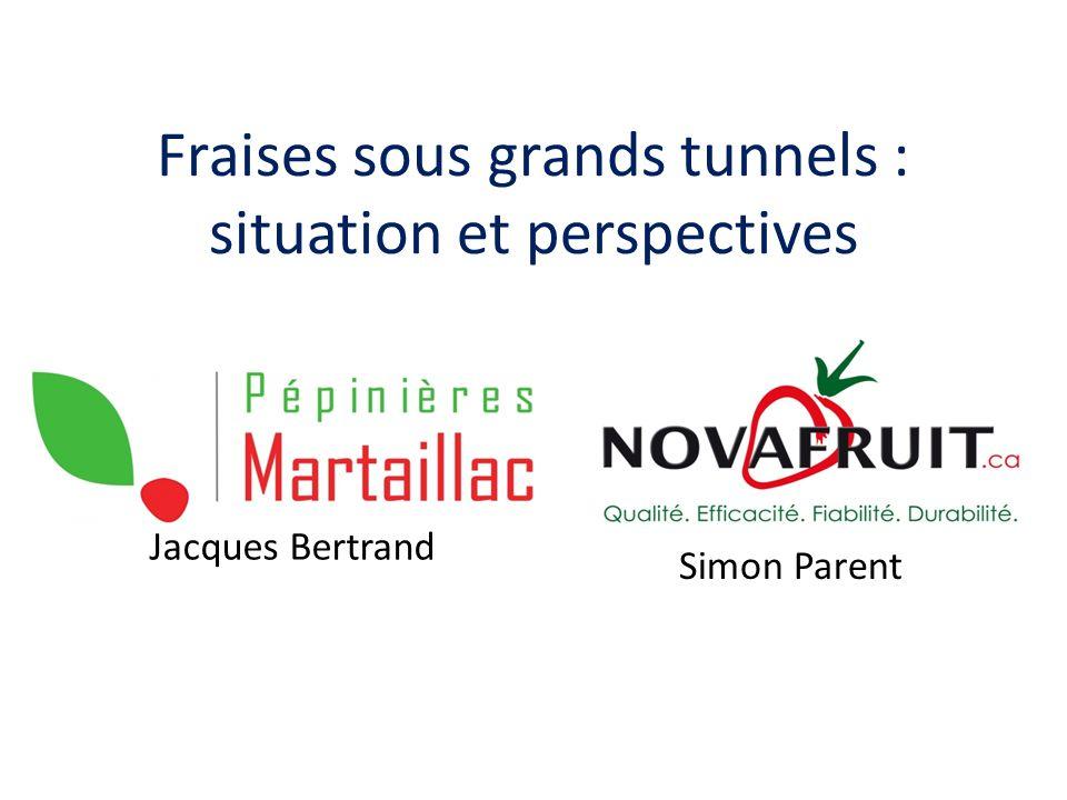 Fraises sous grands tunnels : situation et perspectives Jacques Bertrand Simon Parent