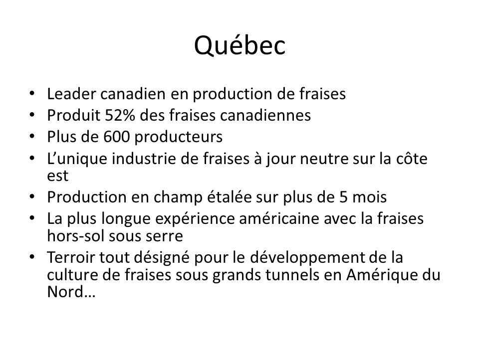 Québec Leader canadien en production de fraises Produit 52% des fraises canadiennes Plus de 600 producteurs Lunique industrie de fraises à jour neutre