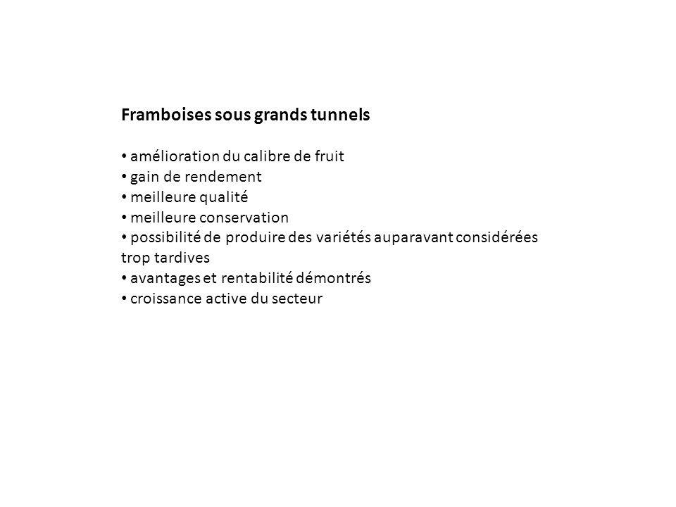 Framboises sous grands tunnels amélioration du calibre de fruit gain de rendement meilleure qualité meilleure conservation possibilité de produire des