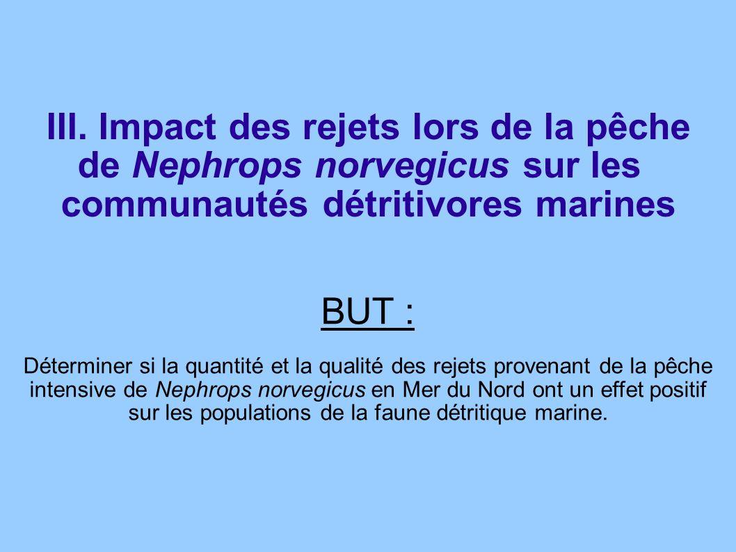 BUT : Déterminer si la quantité et la qualité des rejets provenant de la pêche intensive de Nephrops norvegicus en Mer du Nord ont un effet positif su