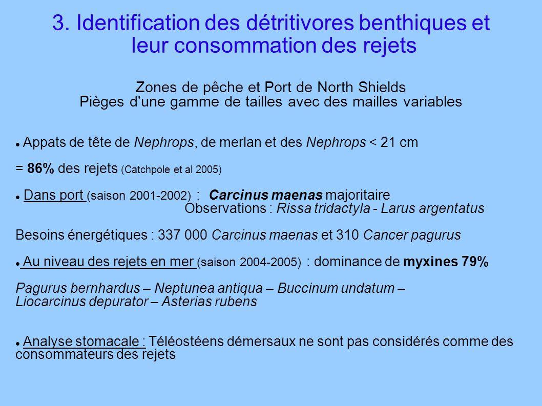 3. Identification des détritivores benthiques et leur consommation des rejets Zones de pêche et Port de North Shields Pièges d'une gamme de tailles av