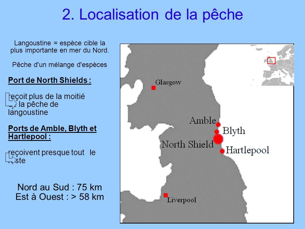 Langoustine = espèce cible la plus importante en mer du Nord. Pêche d'un mélange d'espèces Port de North Shields : reçoit plus de la moitié de la pêch