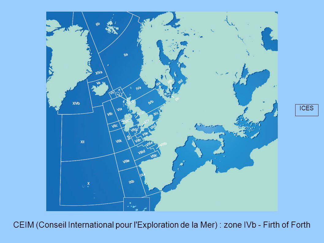 CEIM (Conseil International pour l'Exploration de la Mer) : zone IVb - Firth of Forth ICES