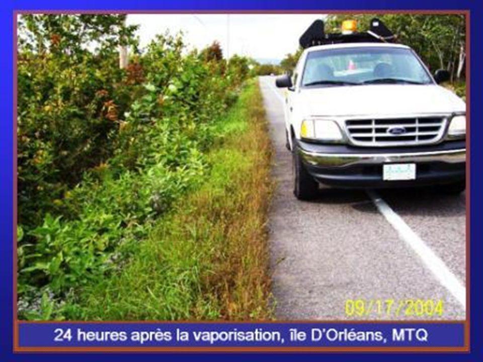 - Ministère des Transports du Québec Ministère des Transports du Québec : M.