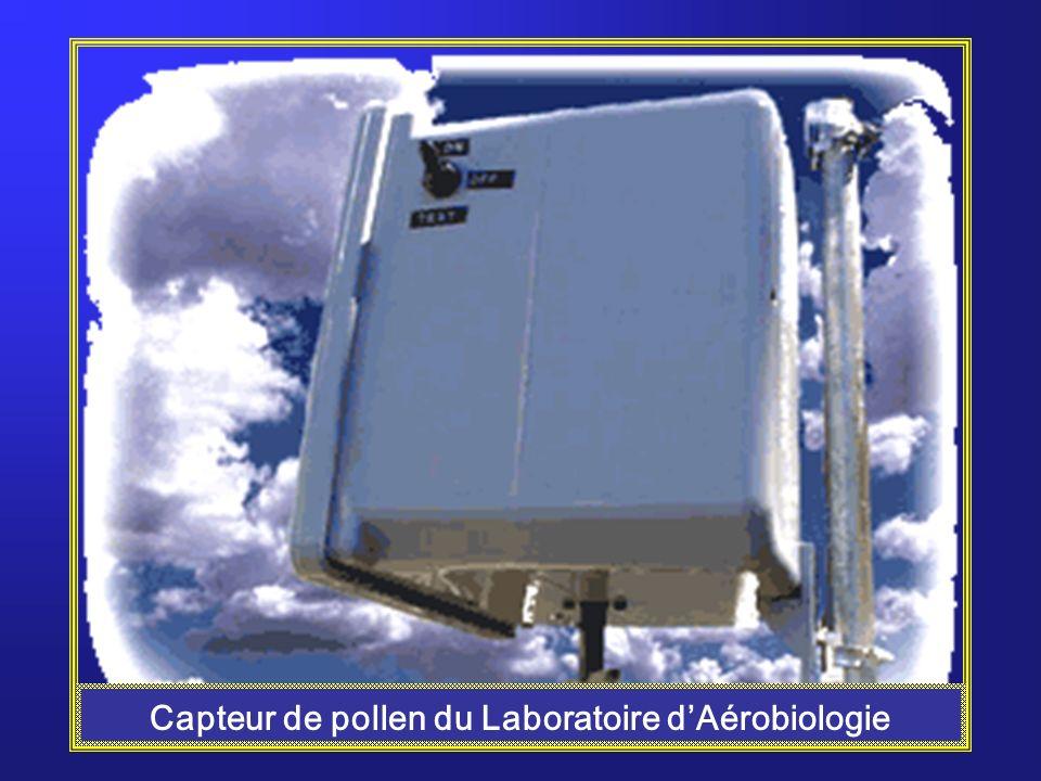 Lindice pollinique: La mesure de la concentration de pollen dans lair, lindice pollinique, se fait à partir de capteurs de pollen.
