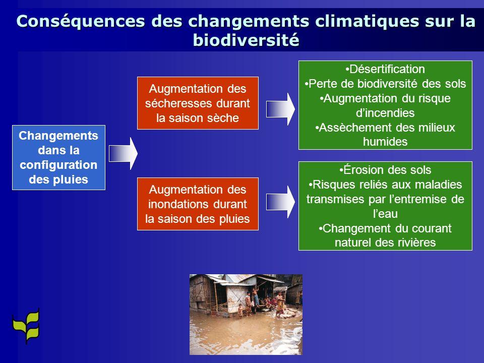 Changements dans la configuration des pluies Augmentation des sécheresses durant la saison sèche Désertification Perte de biodiversité des sols Augmentation du risque dincendies Assèchement des milieux humides Érosion des sols Risques reliés aux maladies transmises par lentremise de leau Changement du courant naturel des rivières Augmentation des inondations durant la saison des pluies Conséquences des changements climatiques sur la biodiversité Changements dans la configuration des pluies Augmentation des sécheresses durant la saison sèche Désertification Perte de biodiversité des sols Augmentation du risque dincendies Assèchement des milieux humides Érosion des sols Risques reliés aux maladies transmises par lentremise de leau Changement du courant naturel des rivières Augmentation des inondations durant la saison des pluies Changements dans la configuration des pluies Augmentation des sécheresses durant la saison sèche Désertification Perte de biodiversité des sols Augmentation du risque dincendies Assèchement des milieux humides Érosion des sols Risques reliés aux maladies transmises par lentremise de leau Changement du courant naturel des rivières Augmentation des inondations durant la saison des pluies