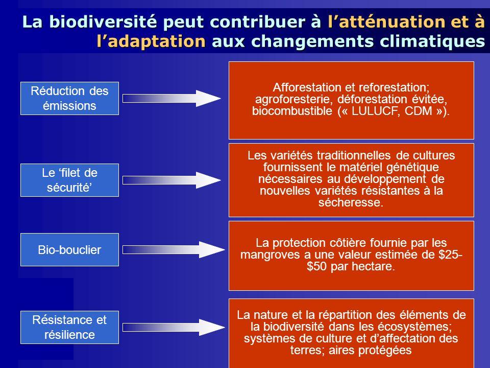 Réduction des émissions Le filet de sécurité Bio-bouclier Afforestation et reforestation; agroforesterie, déforestation évitée, biocombustible (« LULUCF, CDM »).