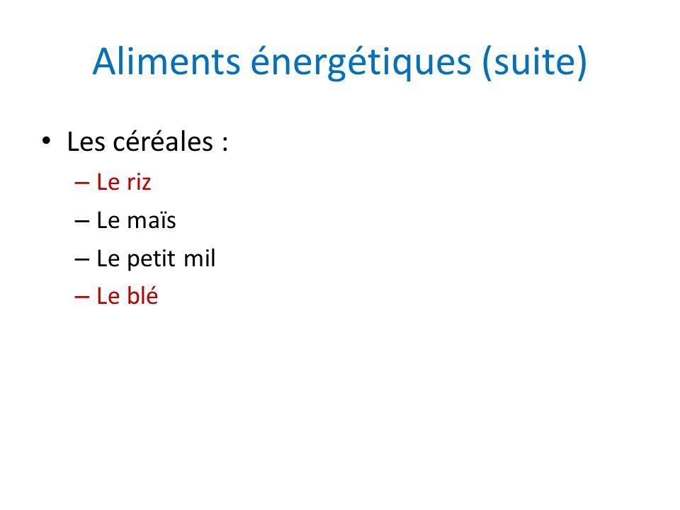 Aliments énergétiques (suite) Les céréales : – Le riz – Le maïs – Le petit mil – Le blé