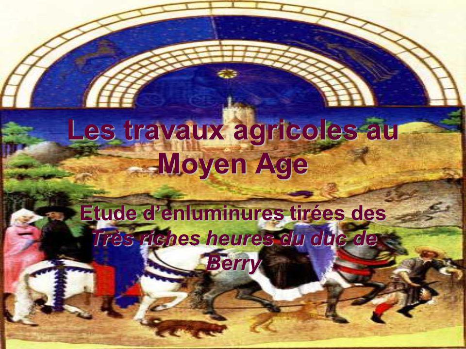 Les travaux agricoles au Moyen Age Etude denluminures tirées des Très riches heures du duc de Berry