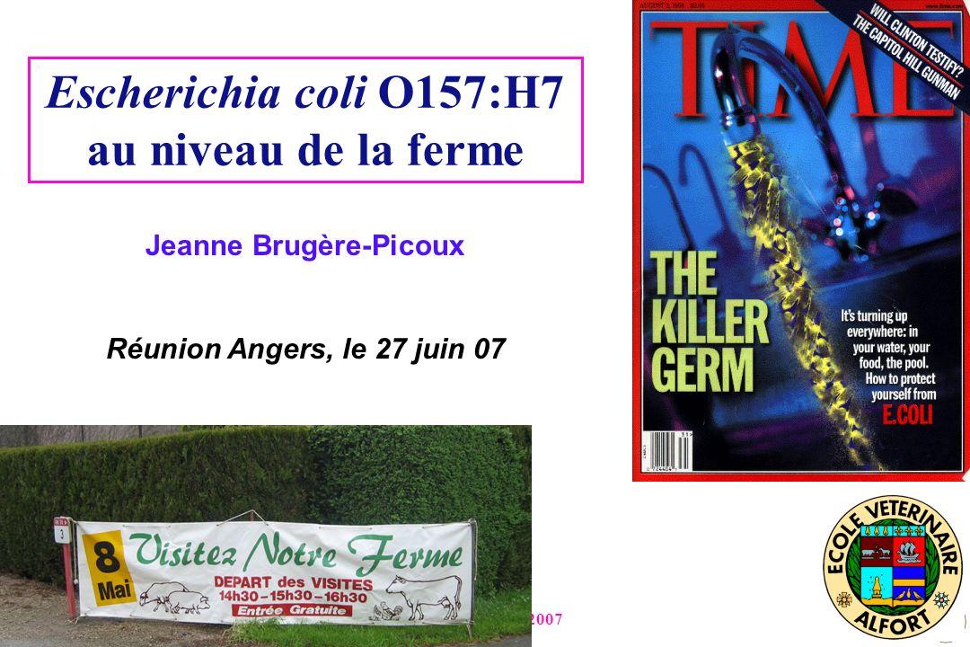 Angers, 27 juin 2007 Escherichia coli O157:H7 au niveau de la ferme Jeanne Brugère-Picoux Réunion Angers, le 27 juin 07