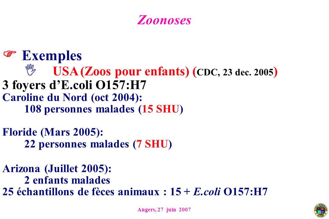 Angers, 27 juin 2007 Exemples USA (Zoos pour enfants) ( CDC, 23 dec. 2005 ) 3 foyers dE.coli O157:H7 Caroline du Nord (oct 2004): 108 personnes malade