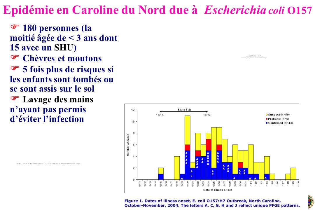 Angers, 27 juin 2007 Epidémie en Caroline du Nord due à Escherichia coli O157 180 personnes (la moitié âgée de < 3 ans dont 15 avec un SHU) Chèvres et