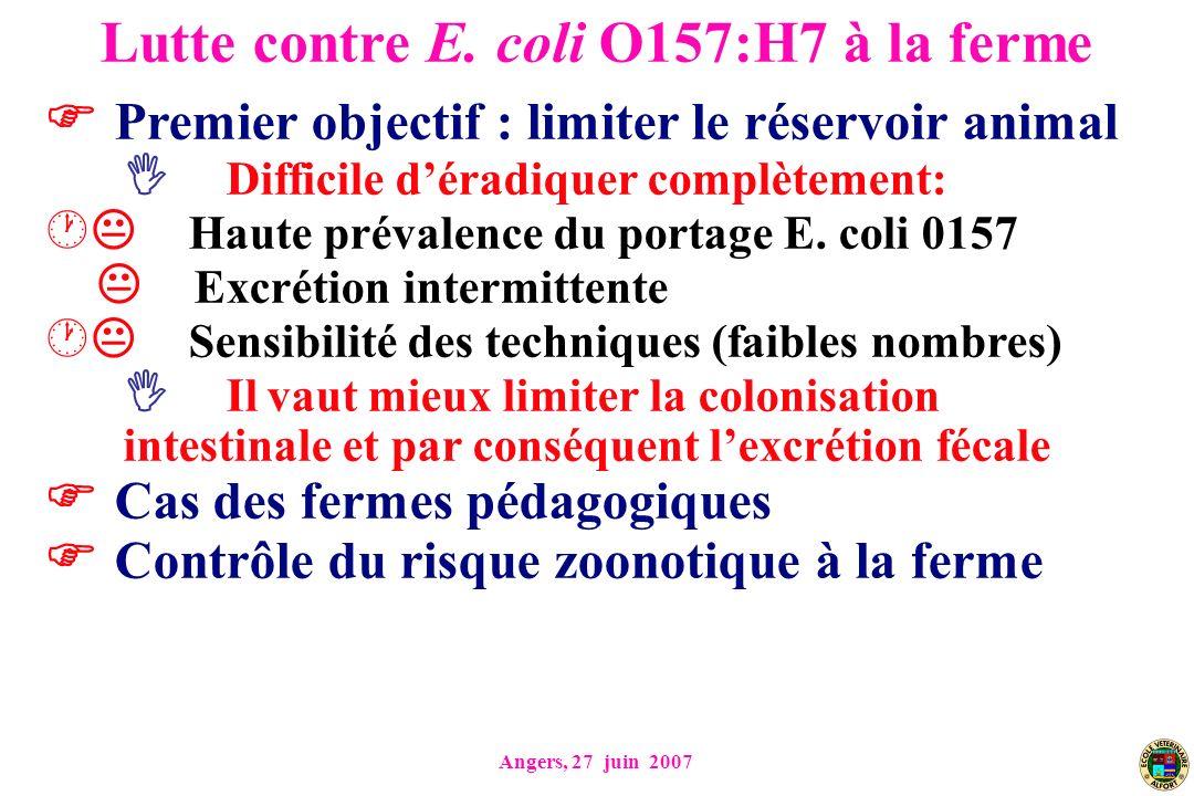 Angers, 27 juin 2007 Premier objectif : limiter le réservoir animal Difficile déradiquer complètement: Haute prévalence du portage E. coli 0157 Excrét