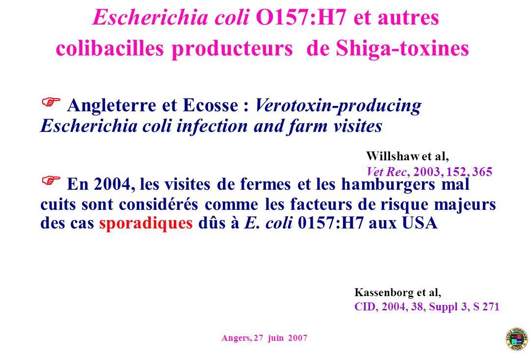 Angers, 27 juin 2007 Escherichia coli O157:H7 et autres colibacilles producteurs de Shiga-toxines Angleterre et Ecosse : Verotoxin-producing Escherichia coli infection and farm visites En 2004, les visites de fermes et les hamburgers mal cuits sont considérés comme les facteurs de risque majeurs des cas sporadiques dûs à E.