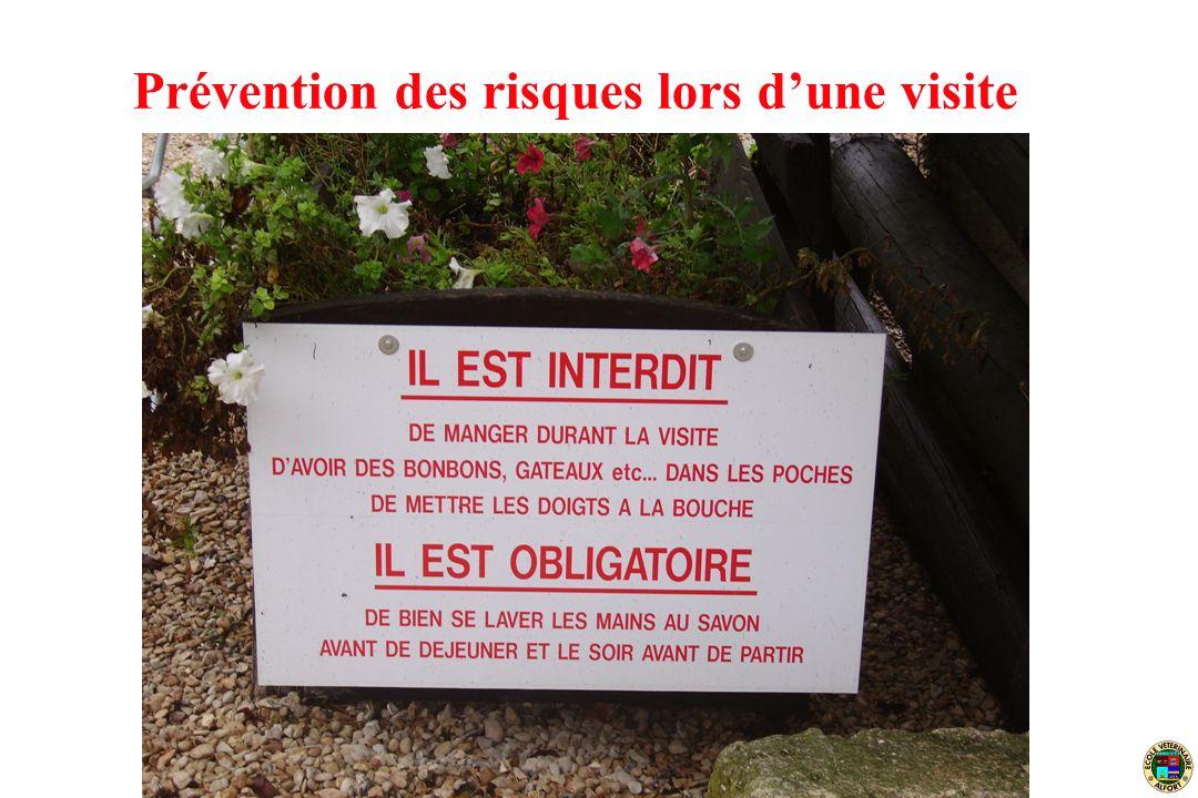 Angers, 27 juin 2007 Prévention des risques lors dune visite