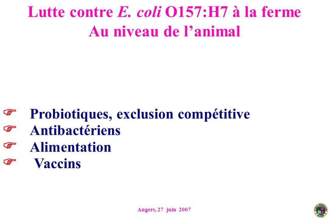 Angers, 27 juin 2007 Probiotiques, exclusion compétitive Antibactériens Alimentation Vaccins Lutte contre E. coli O157:H7 à la ferme Au niveau de lani