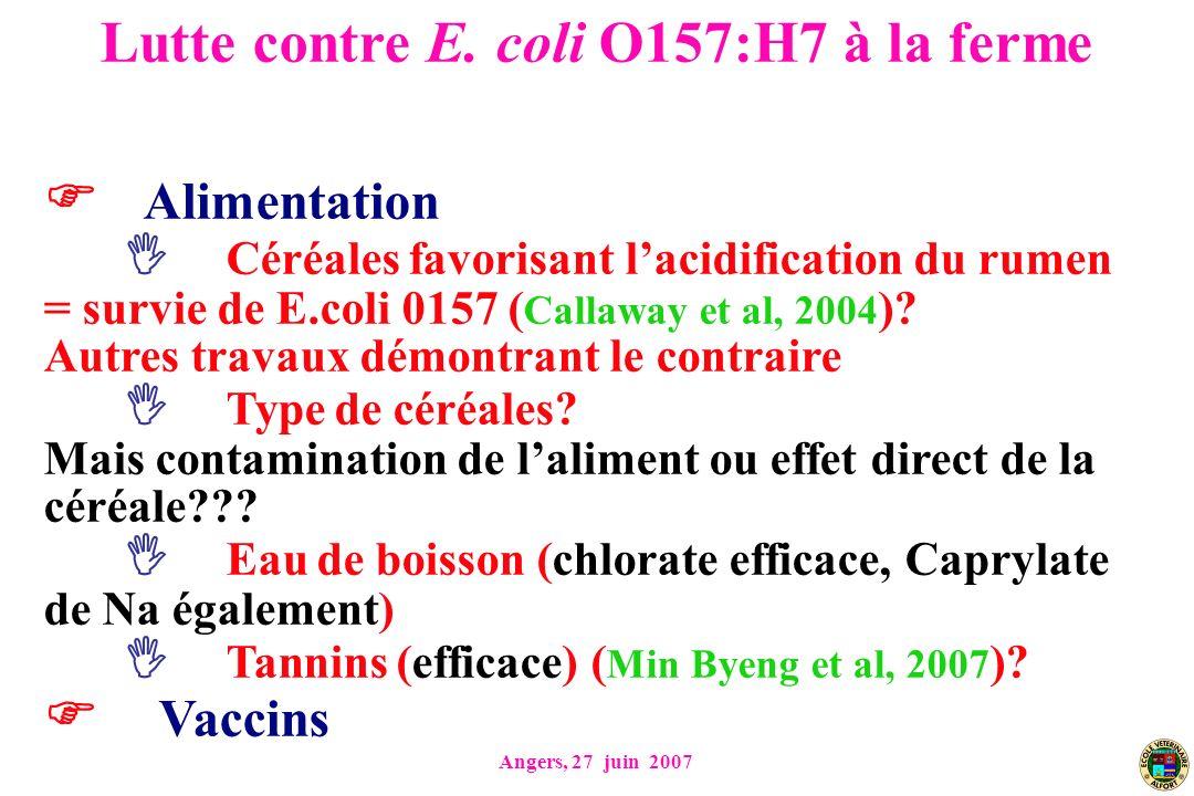 Angers, 27 juin 2007 Alimentation Céréales favorisant lacidification du rumen = survie de E.coli 0157 ( Callaway et al, 2004 )? Autres travaux démontr