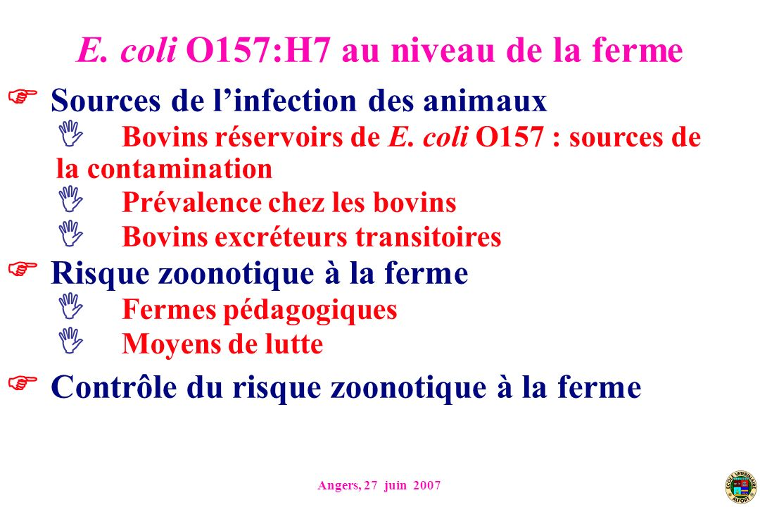 Angers, 27 juin 2007 Sources de linfection des animaux Bovins réservoirs de E.