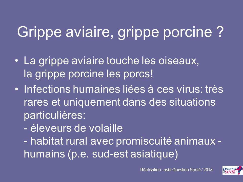 Grippe aviaire, grippe porcine ? La grippe aviaire touche les oiseaux, la grippe porcine les porcs! Infections humaines liées à ces virus: très rares