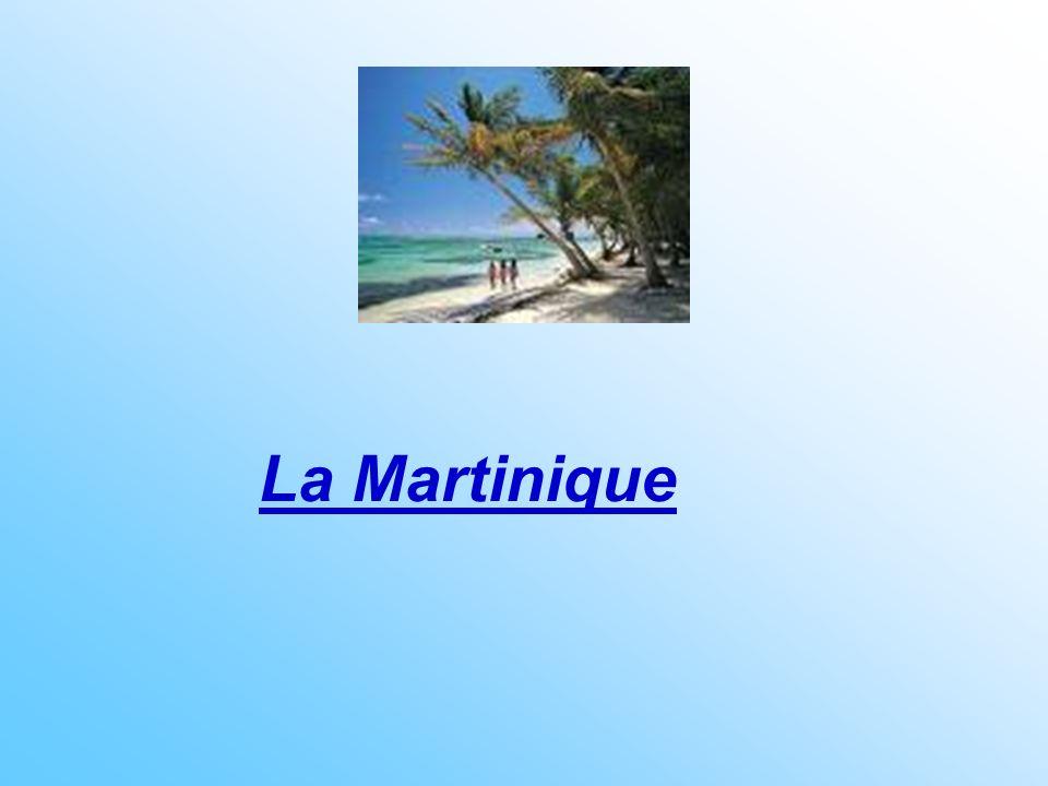 a Martinique constitue lune des Petites Antilles : Fort-de-France (la capitale), Le Marin, Saint-Pierre, et La Trinité sont les villes principales.