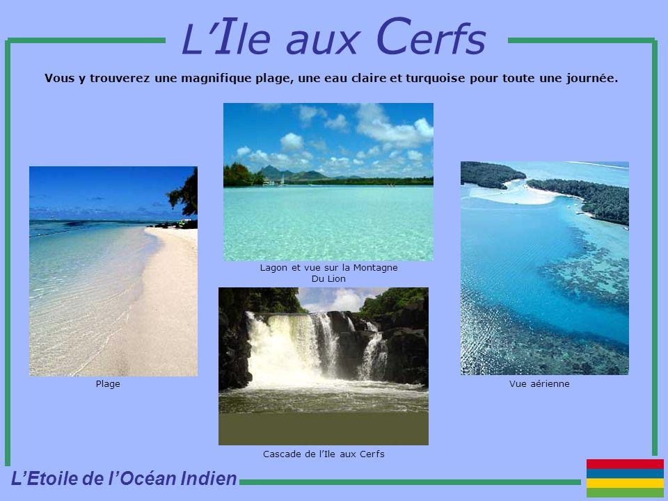 L I le aux C erfs Vous y trouverez une magnifique plage, une eau claire et turquoise pour toute une journée.