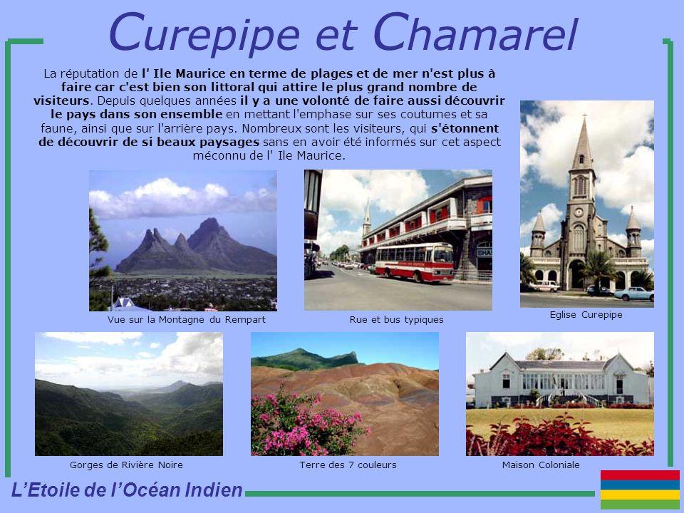 La réputation de l Ile Maurice en terme de plages et de mer n est plus à faire car c est bien son littoral qui attire le plus grand nombre de visiteurs.