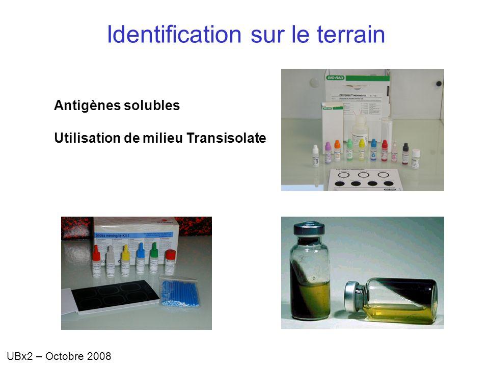 UBx2 – Octobre 2008 Antigènes solubles Utilisation de milieu Transisolate Identification sur le terrain
