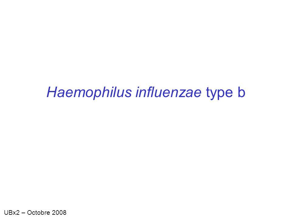 UBx2 – Octobre 2008 Haemophilus influenzae type b
