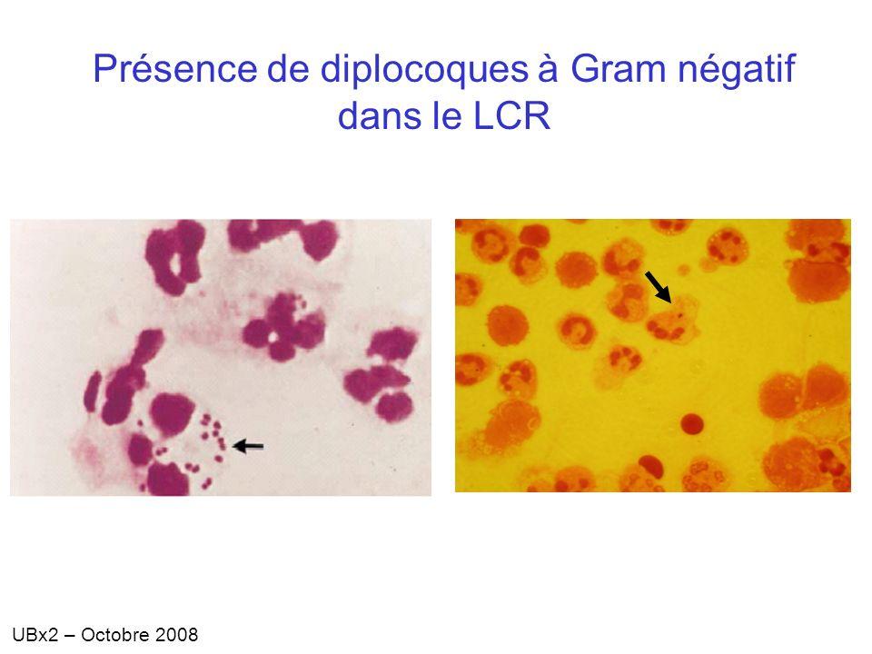 UBx2 – Octobre 2008 Présence de diplocoques à Gram négatif dans le LCR