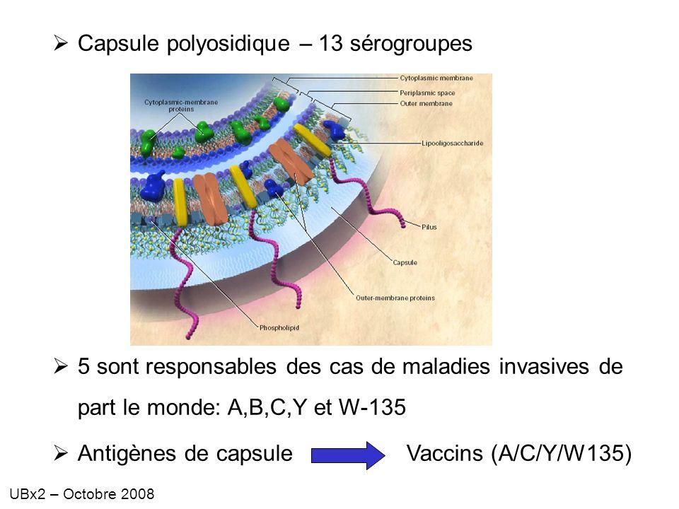 UBx2 – Octobre 2008 Capsule polyosidique – 13 sérogroupes 5 sont responsables des cas de maladies invasives de part le monde: A,B,C,Y et W-135 Antigèn