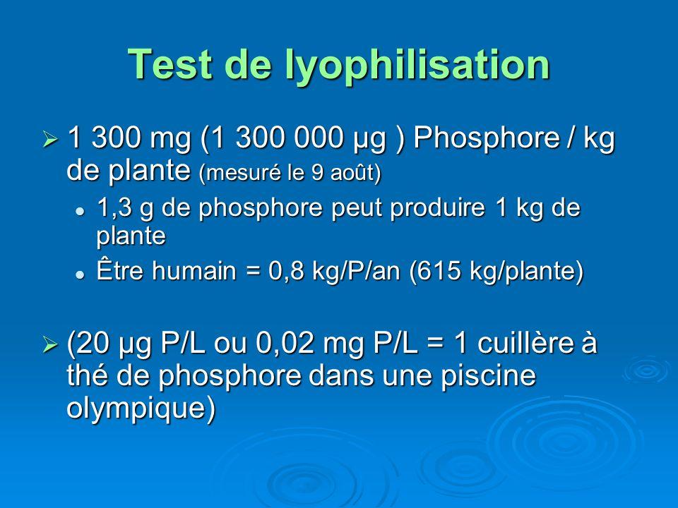 Test de lyophilisation 1 300 mg (1 300 000 μg ) Phosphore / kg de plante (mesuré le 9 août) 1 300 mg (1 300 000 μg ) Phosphore / kg de plante (mesuré