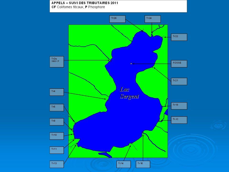 Matières en suspension (MES) Débris en suspension dans la colonne deau (sol, débris organiques, autres) érosion, sédiments, végétation, travaux de remblais- déblais sans protection Débris en suspension dans la colonne deau (sol, débris organiques, autres) érosion, sédiments, végétation, travaux de remblais- déblais sans protection À 5 mg/L effets chroniques sur la vie aquatique À 5 mg/L effets chroniques sur la vie aquatique À 25 mg/L effets toxiques (apport en P, colmatage des frayères, production dalgues, stress sur les poissons …) À 25 mg/L effets toxiques (apport en P, colmatage des frayères, production dalgues, stress sur les poissons …) AUCUN ÉCHANTILLONNAGE EN 2011 AUCUN ÉCHANTILLONNAGE EN 2011