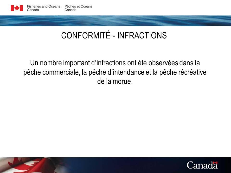 CONFORMITÉ - INFRACTIONS Un nombre important d infractions ont été observées dans la pêche commerciale, la pêche d intendance et la pêche récréative de la morue.
