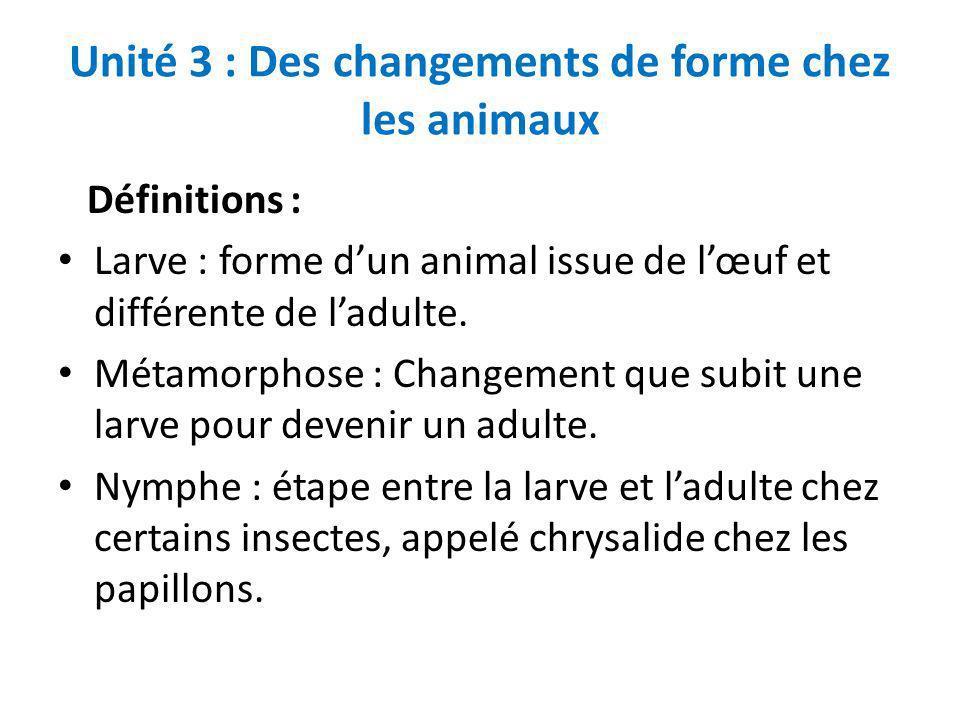 Unité 3 : Des changements de forme chez les animaux Définitions : Larve : forme dun animal issue de lœuf et différente de ladulte. Métamorphose : Chan