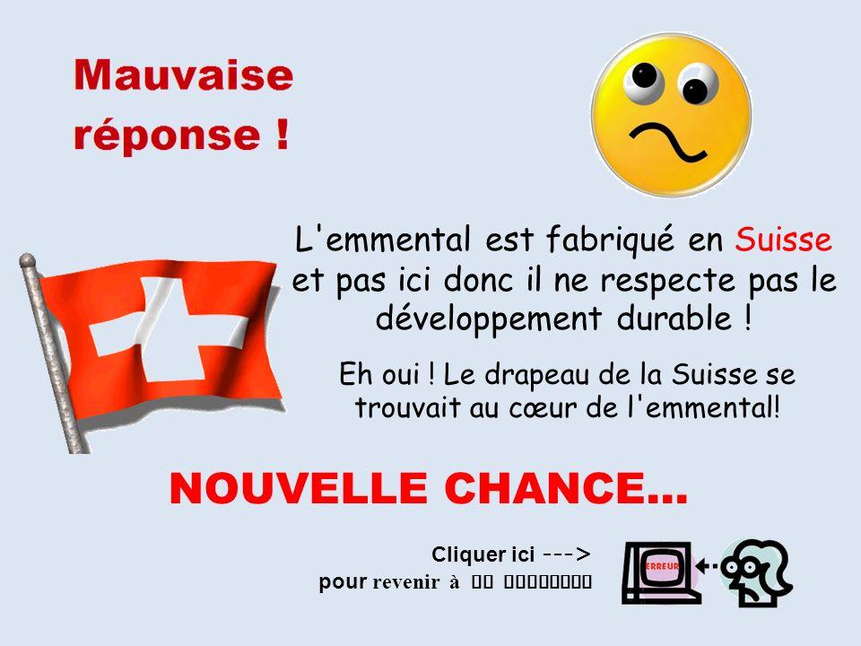 L'emmental est fabriqué en Suisse et pas ici donc il ne respecte pas le développement durable ! Eh oui ! Le drapeau de la Suisse se trouvait au cœur d