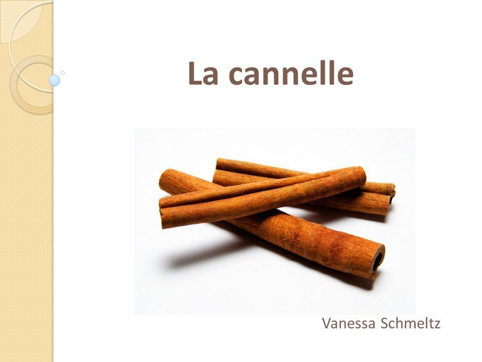 La cannelle Vanessa Schmeltz