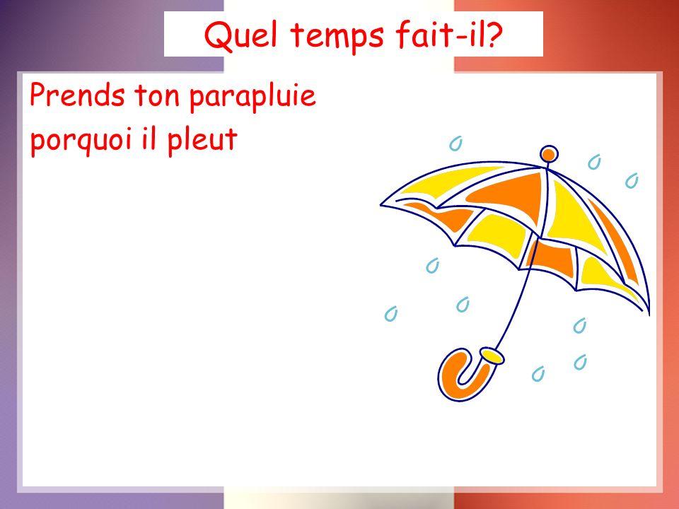 Quel temps fait-il Prends ton parapluie porquoi il pleut