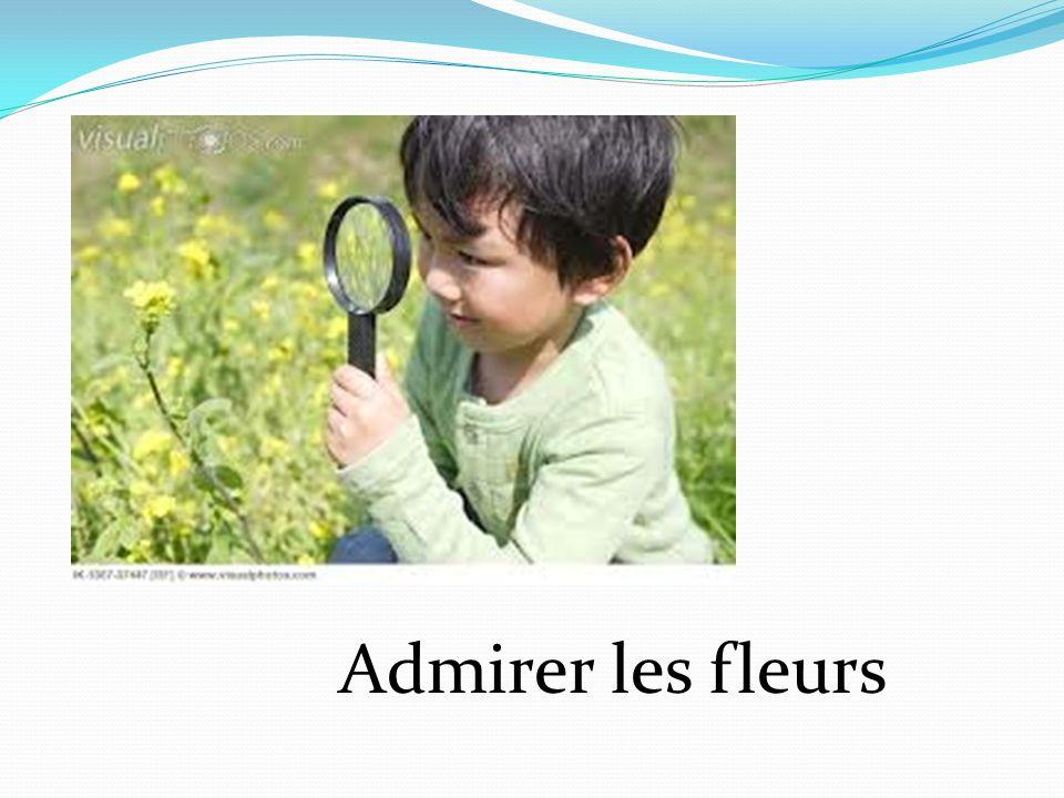 Admirer les fleurs