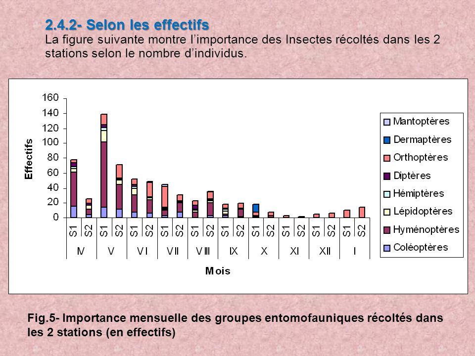 2.4.2- Selon les effectifs La figure suivante montre limportance des Insectes récoltés dans les 2 stations selon le nombre dindividus. Fig.5- Importan