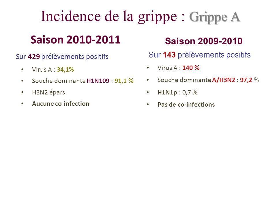 Grippe A Incidence de la grippe : Grippe A Saison 2010-2011 Sur 429 prélèvements positifs Virus A : 34,1% Souche dominante H1N109 : 91,1 % H3N2 épars Aucune co-infection Saison 2009-2010 Sur 143 prélèvements positifs Virus A : 140 % Souche dominante A/H3N2 : 97,2 % H1N1p : 0,7 % Pas de co-infections