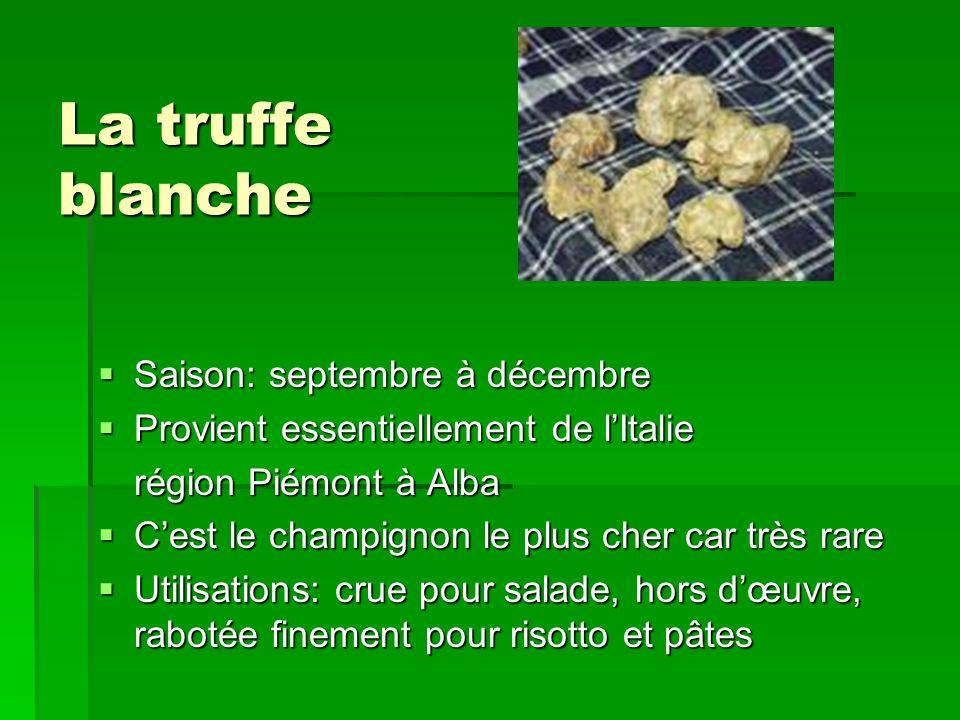 La truffe blanche Saison: septembre à décembre Saison: septembre à décembre Provient essentiellement de lItalie Provient essentiellement de lItalie ré