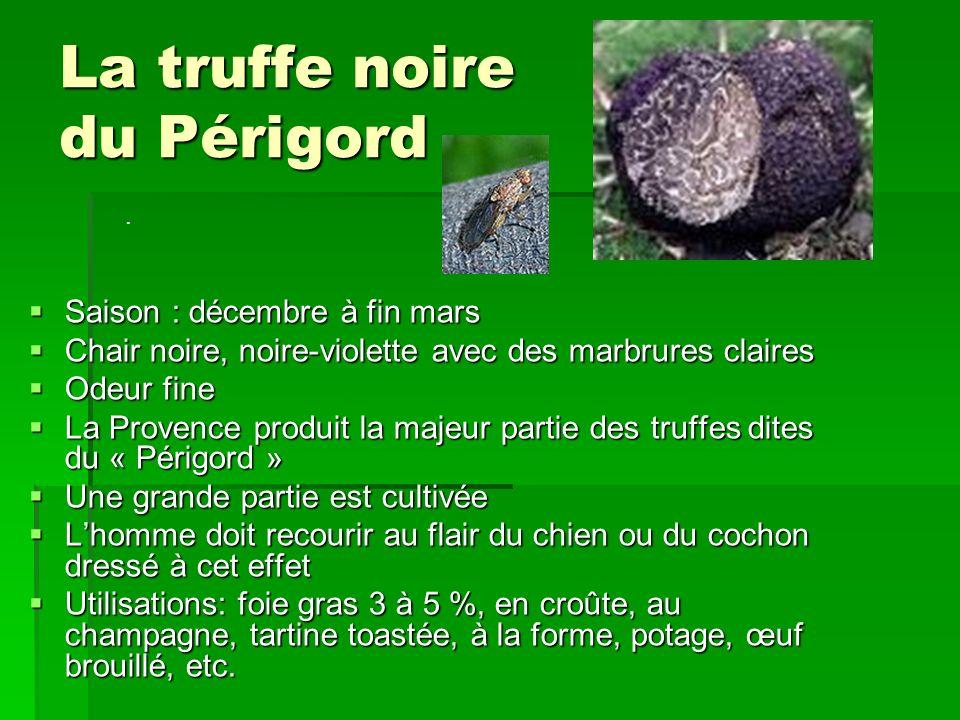 La truffe noire du Périgord Saison : décembre à fin mars Saison : décembre à fin mars Chair noire, noire-violette avec des marbrures claires Chair noi
