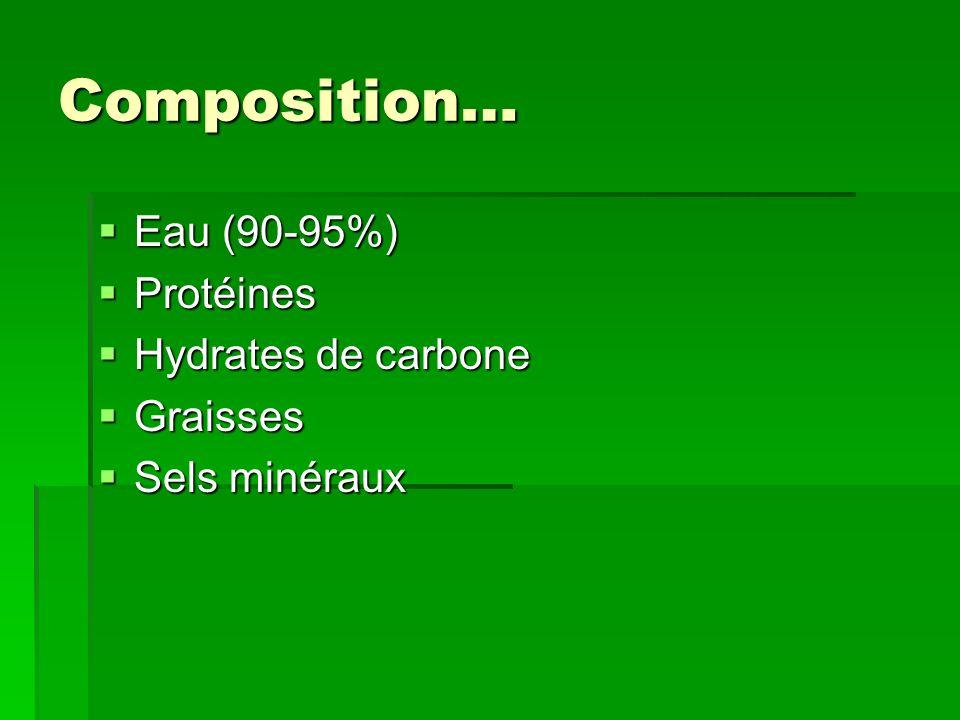 Composition… Eau (90-95%) Eau (90-95%) Protéines Protéines Hydrates de carbone Hydrates de carbone Graisses Graisses Sels minéraux Sels minéraux