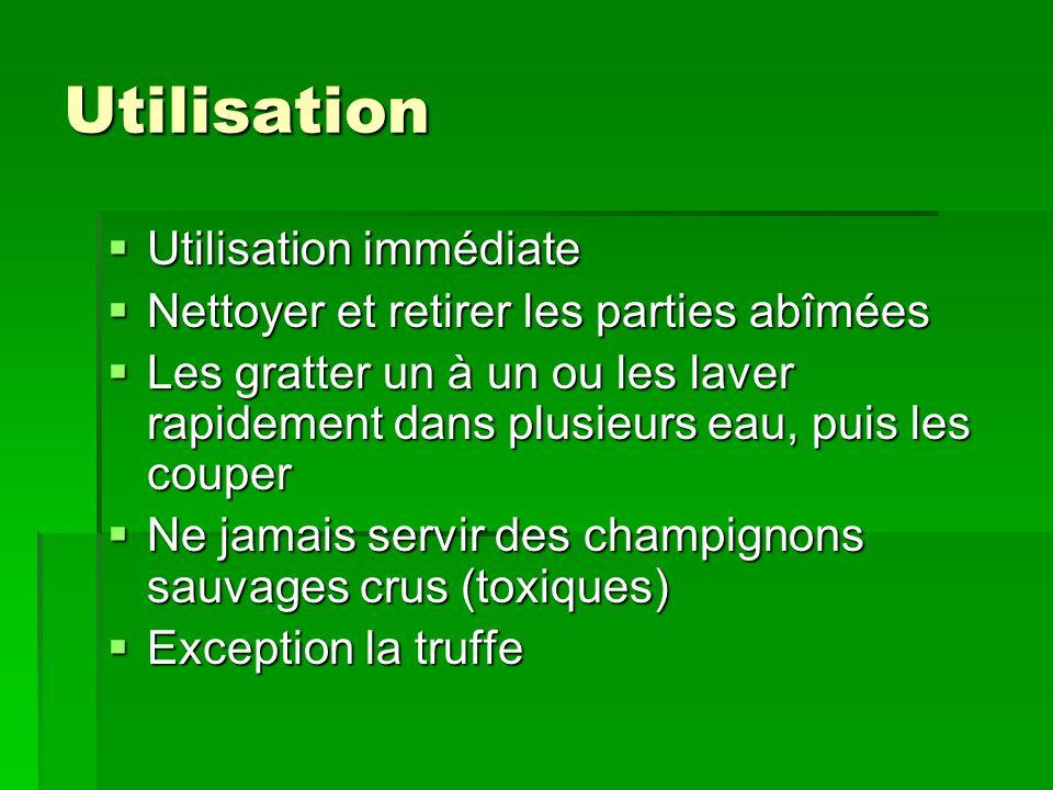 La culture des champignons de Paris Mélange de paille et de fumier de cheval