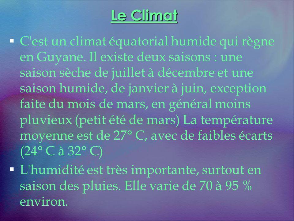 Le Climat C'est un climat équatorial humide qui règne en Guyane. Il existe deux saisons : une saison sèche de juillet à décembre et une saison humide,