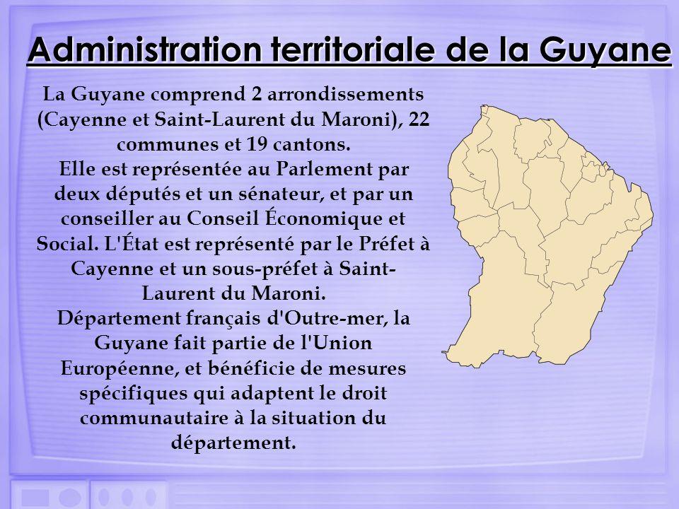 La Guyane comprend 2 arrondissements (Cayenne et Saint-Laurent du Maroni), 22 communes et 19 cantons. Elle est représentée au Parlement par deux déput
