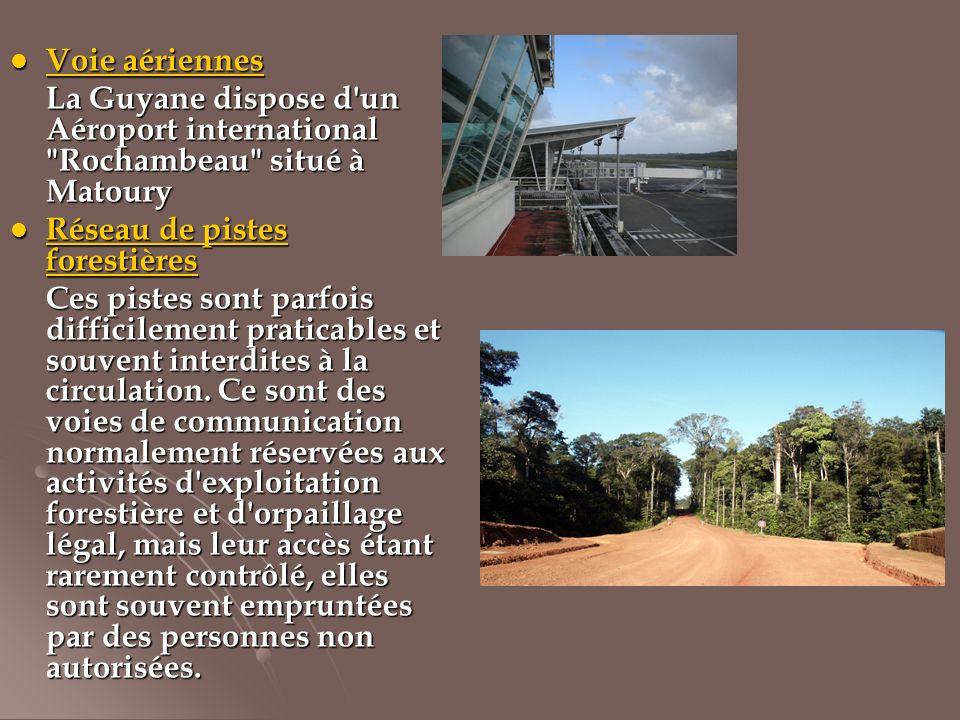 Voie aériennes Voie aériennes La Guyane dispose d'un Aéroport international