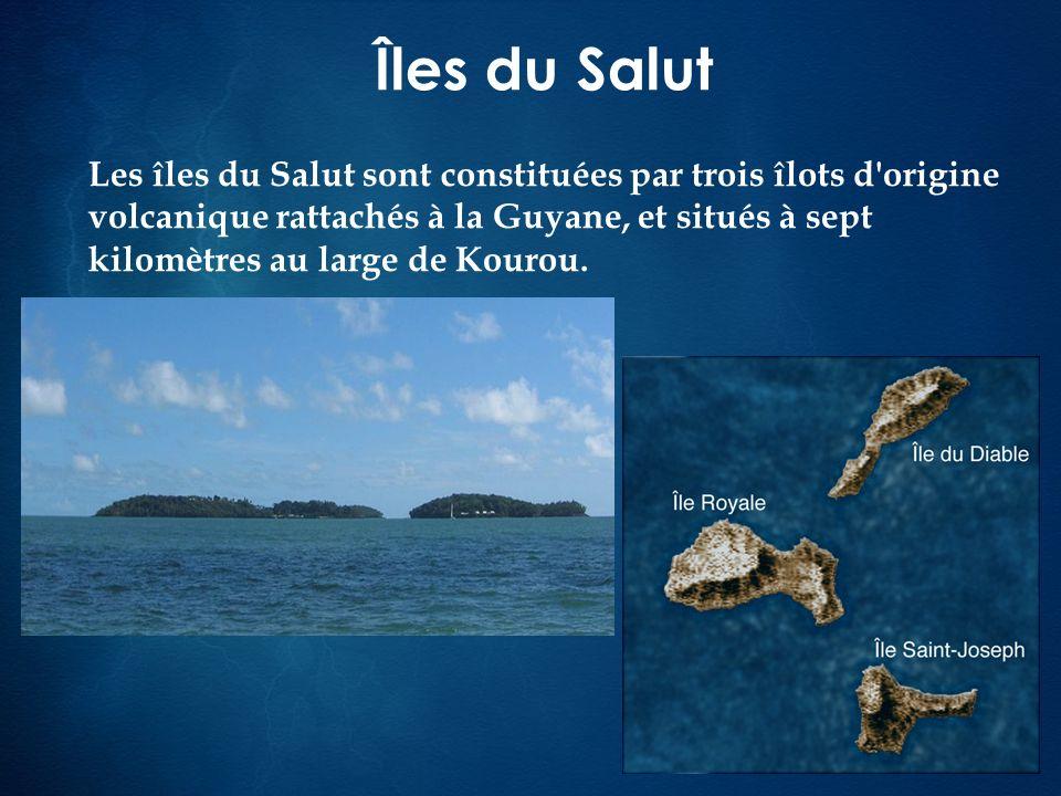 Îles du Salut Les îles du Salut sont constituées par trois îlots d'origine volcanique rattachés à la Guyane, et situés à sept kilomètres au large de K