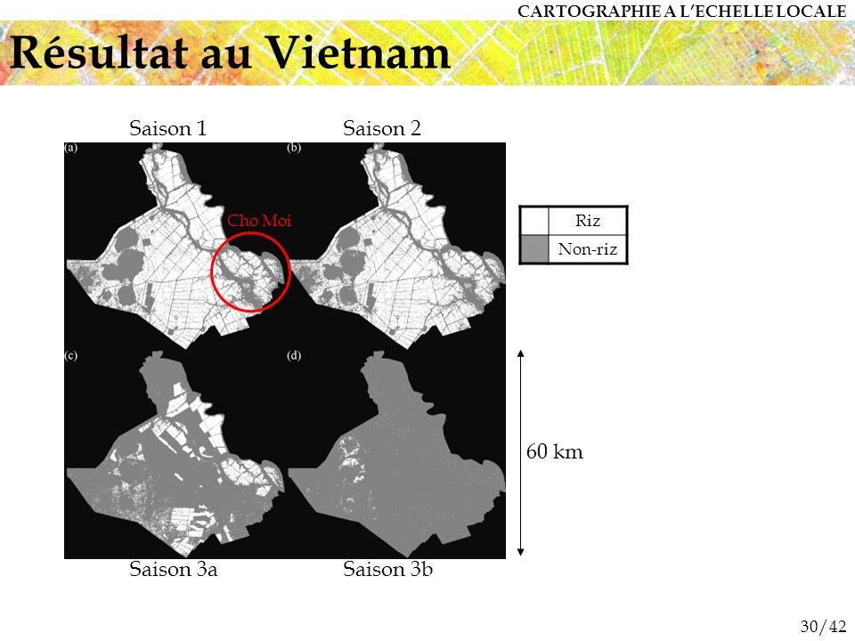 30/42 Résultat au Vietnam Saison 1Saison 2 Saison 3aSaison 3b Cho MoiRiz Non-riz CARTOGRAPHIE A LECHELLE LOCALE 60 km