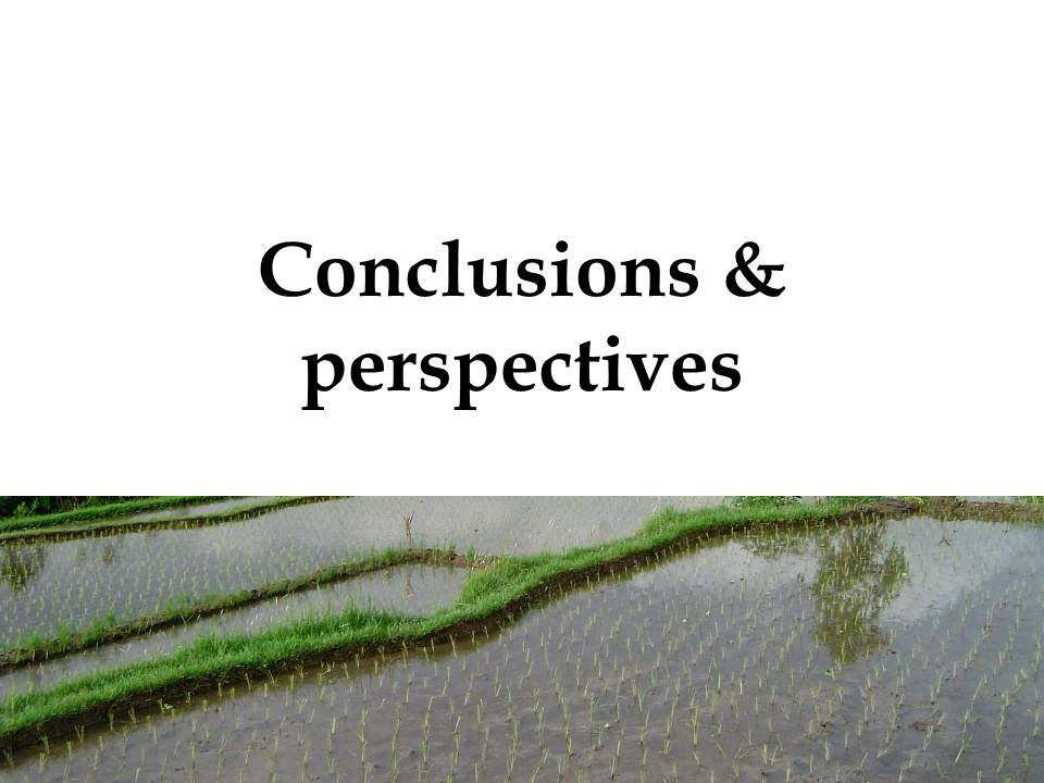 40 Conclusions & perspectives